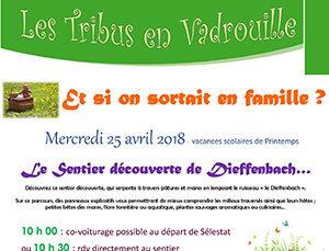 """Les tribus en vadrouille : """"Le sentier découverte de Dieffenbach"""""""